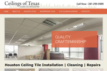 Ceiling Of Texas Website Design
