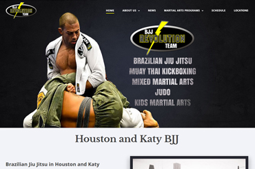 Revolution Dojo Website Design