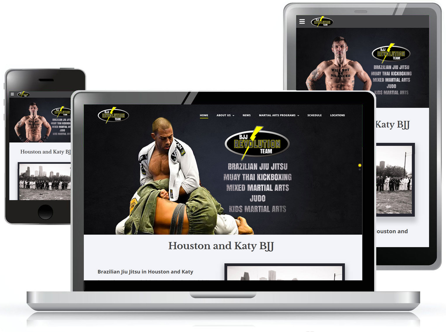 Revolution Dojo Web Design